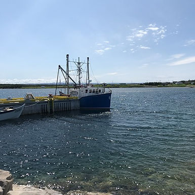 New paper offers a principled governance of seafood trade policy as a just way forward for fisheries in Newfoundland and Labrador