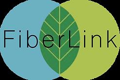 logo fiber link.png