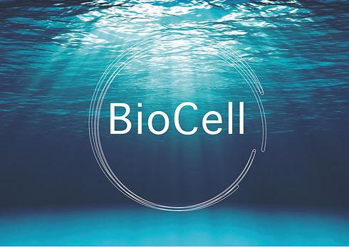 biocell site-01.jpg