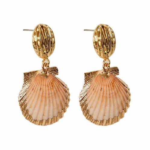 Two Shells Together - Sample Sale!