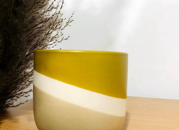 Marigold Pot