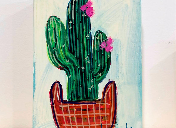 """""""Cacti II"""" - Plants You Can't Kill Collection"""
