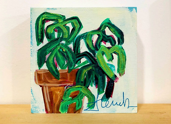 """""""Monstera II"""" - Plants You Can't Kill Collection"""