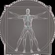 Cabinet Ostéopathe Toulouse DAILLAND