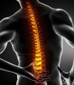 ostéopathe toulouse mal au dos