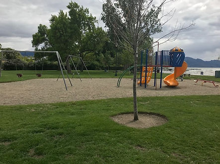 A photo of a playground that is made of flexible sand, and surrounded by grass. One small tree with a grass cut out around the trunk is in the foreground and in the back ground behind the small playground is a lake and big trees. The playground is made up of swings and one slide which are not accessible.