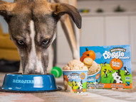 Ben & Jerry's launches ice cream for dogs with two pup-friendly flavours