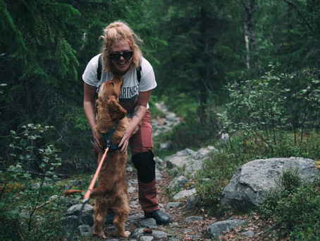 Get active with your dog this new year with this fun Vancouver hiking challenge