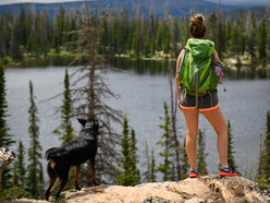 Hiking with your dog? Here's a checklist of outdoors essentials you need in your backpack