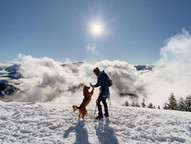 10 of the best dog-friendly winter hikes near Vancouver