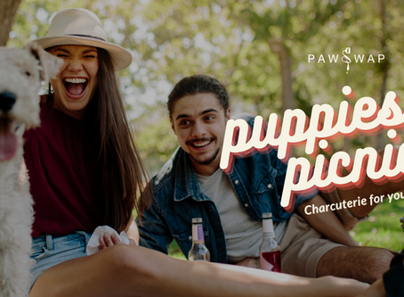 A cute pup-friendly picnic experience is coming to Kits this weekend