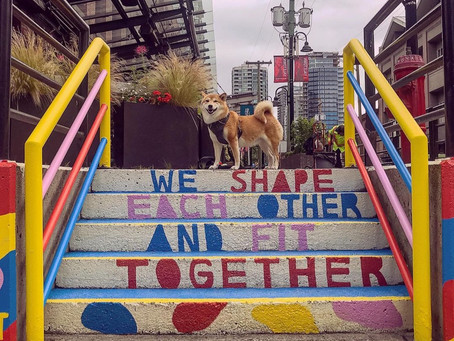 9 of the best dog-friendly things to do with your pup in Yaletown
