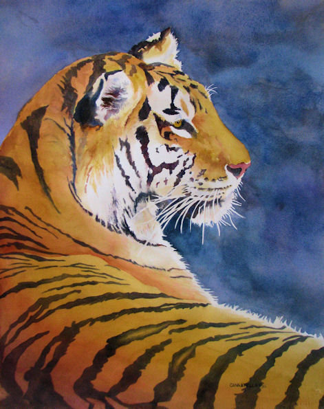 Note Card: Tiger Country