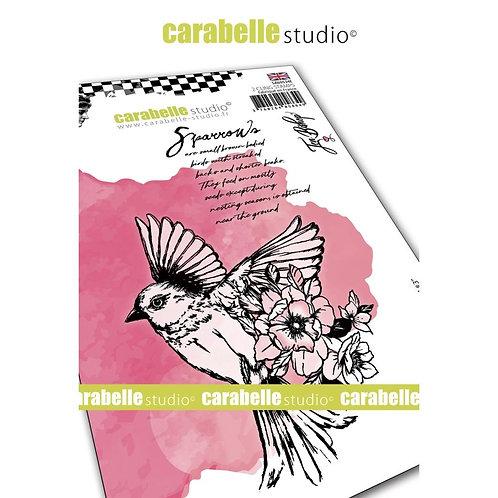 "Carabelle Studio Cling Stamp A6 ""Field Bird #3"""