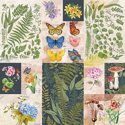 "Bella! Botanical Single-Sided Cardstock 180gsm 12""X12"""