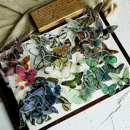 Vellum Butterflies - 80 pcs