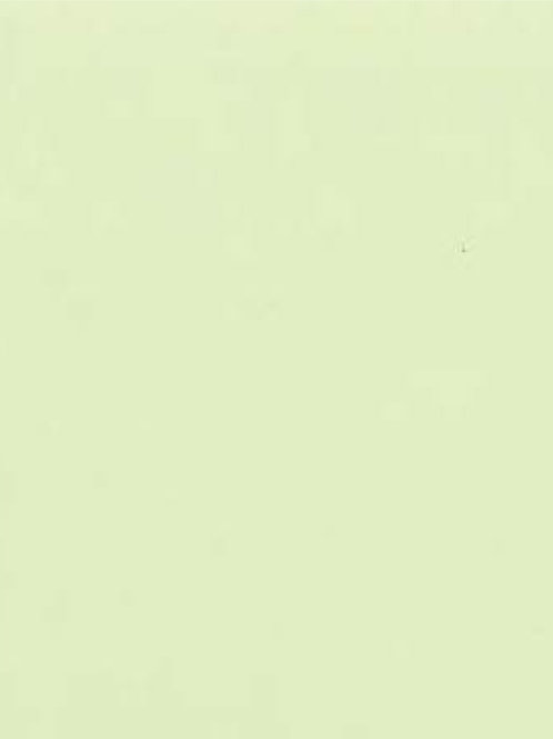 A5 House of Paper Confetti Green Bud A5 Card Stock 210gsm 20 pack