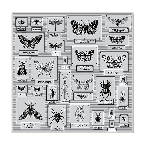 """Hero Arts Cling Stamps 6""""X6"""" """"Bug Collection"""""""