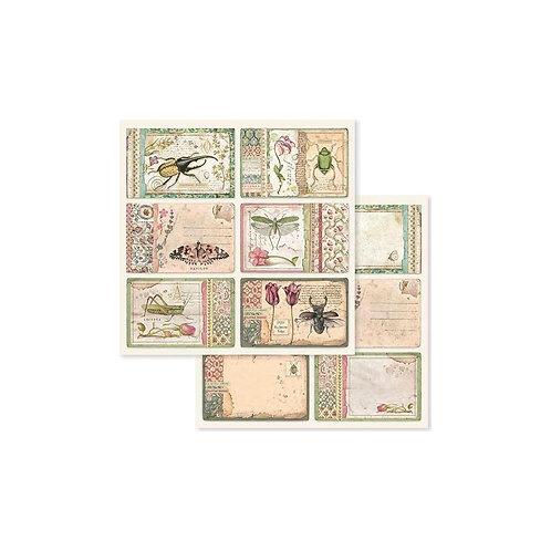 "Stamperia 12"" x12"" Paper  ""Spring Botanic Cards "" 1 Piece"