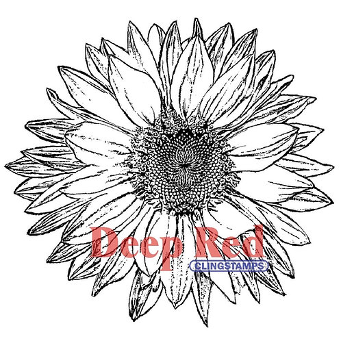 DEEP RED STAMPS-Cling Stamp -Large Sunflower.