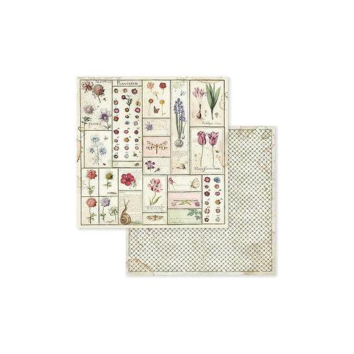 "Stamperia 12"" x12"" Paper  ""Poppy Butterfly "" 1 Piece"