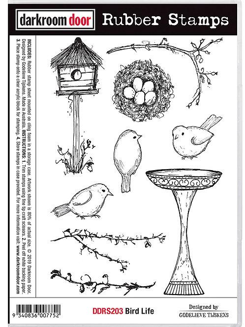 """Darkroom Door - """"Bird Life"""" Cling Rubber Stamp"""