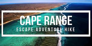 🖐 In this travel guide we'll share all our experience travelling to Cape Range National Park (WA), located on the central coast of...