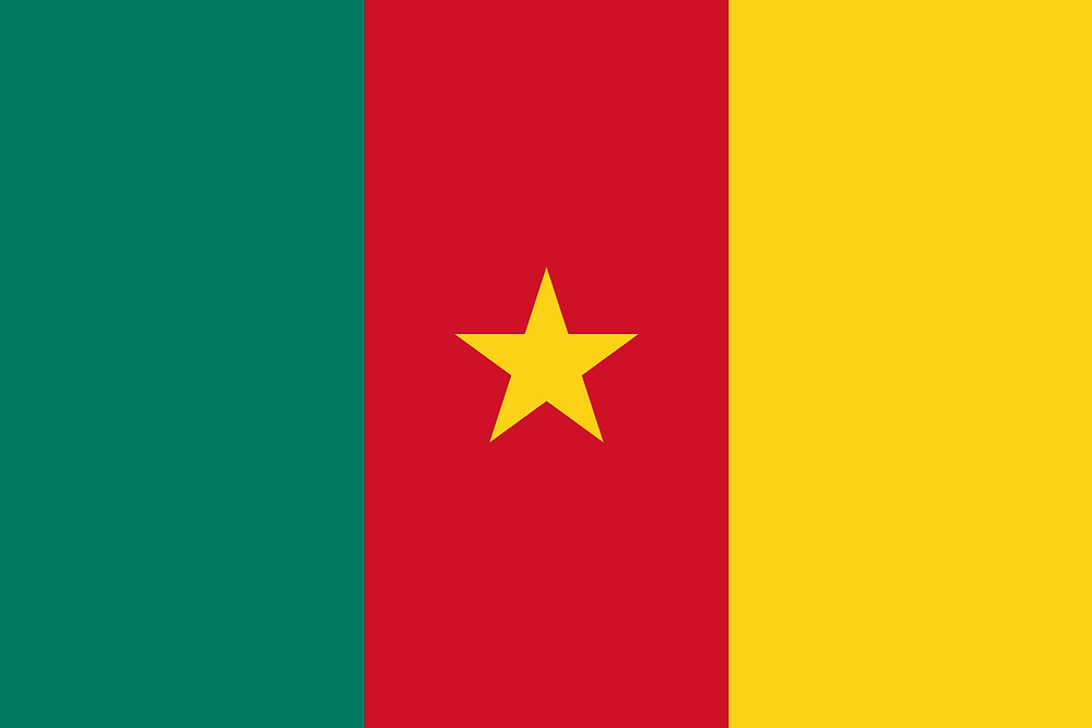Cameroon drone laws and rules