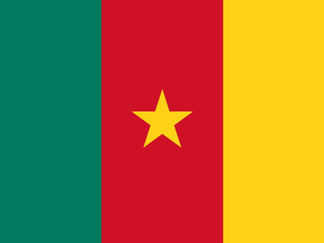 The Ultimate Guide to Cameroon (Yaounde & Douala) Drone Laws & Rules | Drone Forum