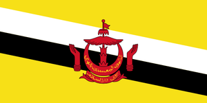 Brunei drone laws and rules