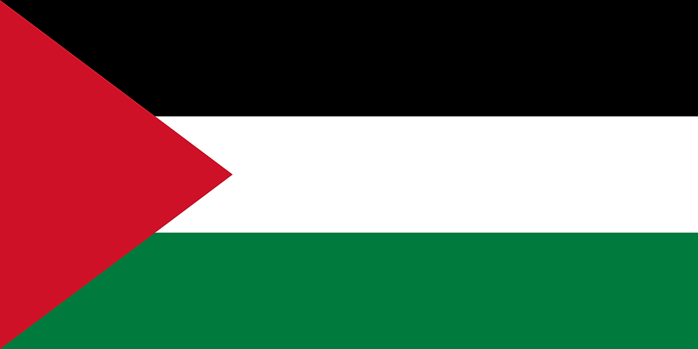 Palestine drone laws and rules