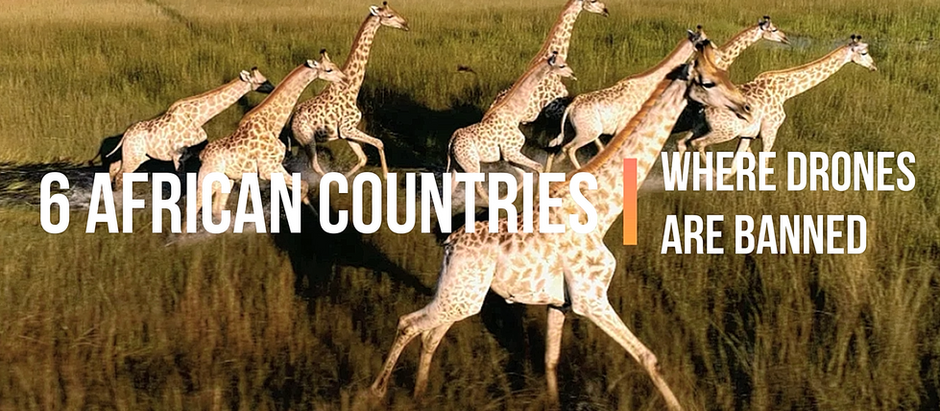 The 6 African countries that banned drones from their skies and why.