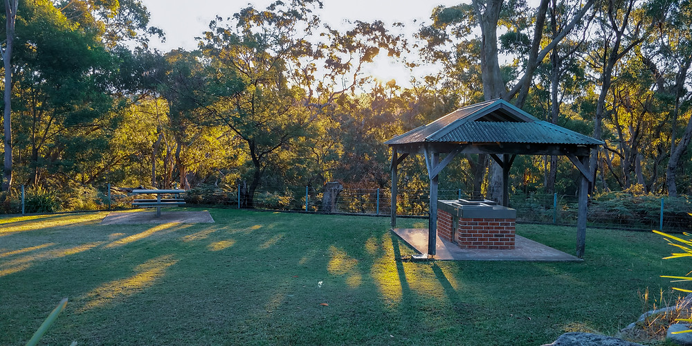Resolute Picnic Area - Ku-ring-gai National Park