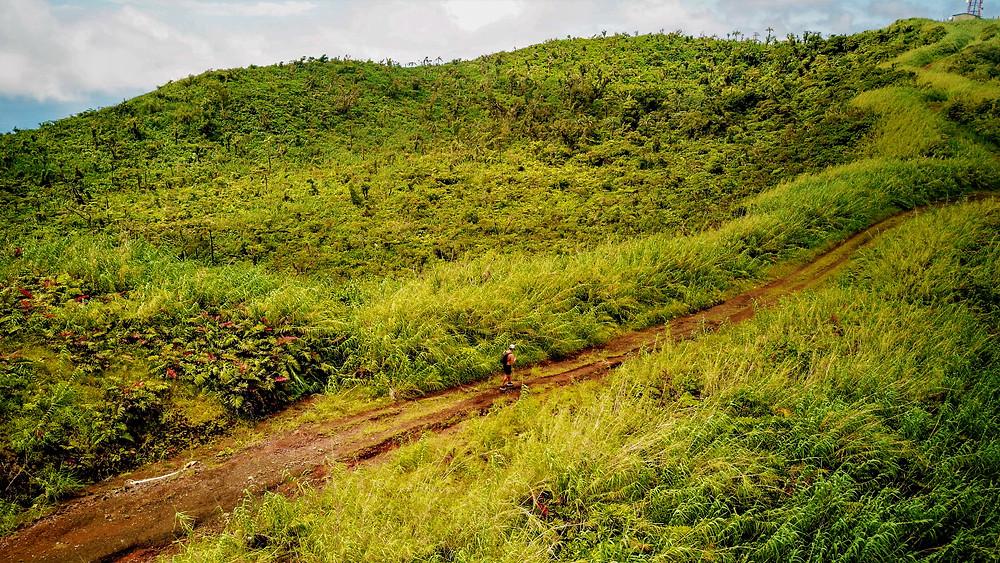 Mount Uluigalau