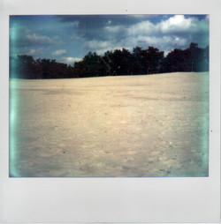zandvlakteOmmen2014.jpg