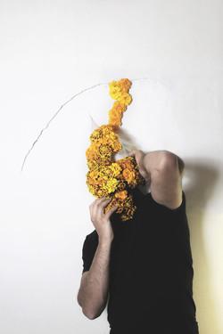 fleursN°5