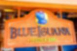 blue-iguana.jpg