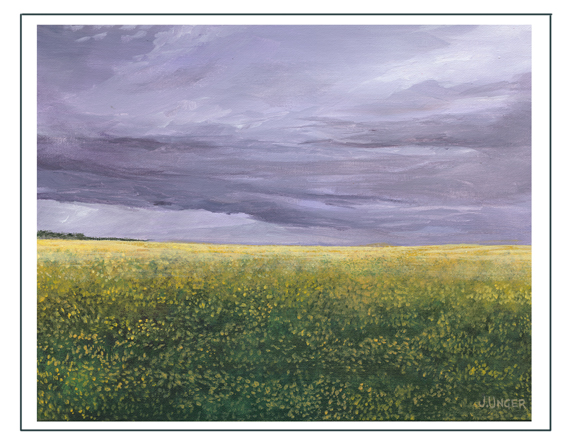 canola_field_etsycards