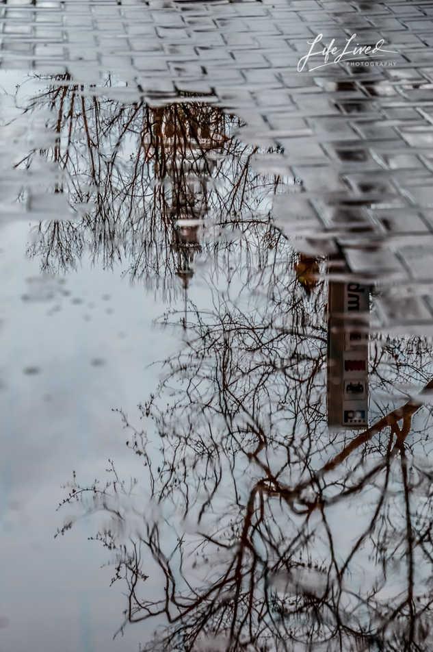 City Street Reflections