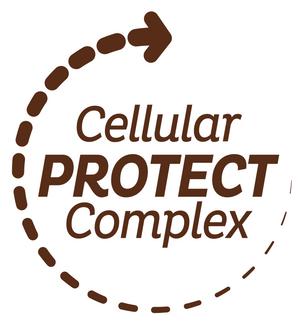 FOCUS SUR LA TECHNOLOGIE CELLULAR PROTECT