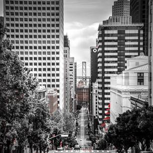 COVID City Excursion