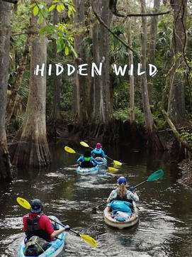 Hidden Wild