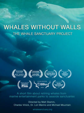 Whales Without Walls