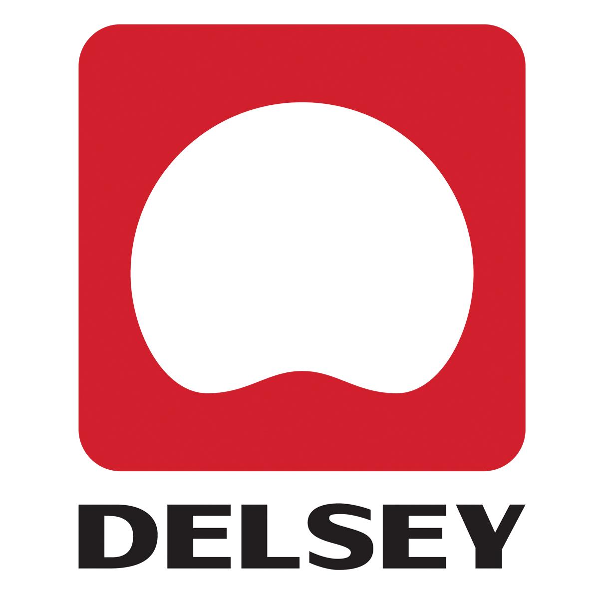 Delsey Logo - 01