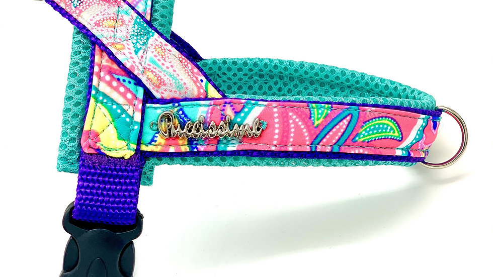 Shiny Turquoise One-Click Harness