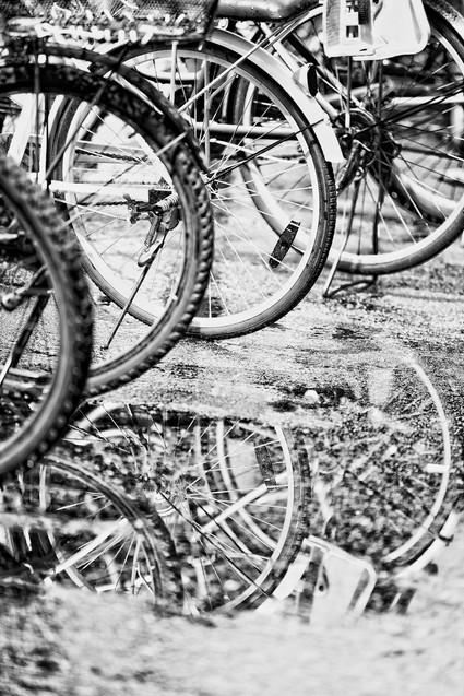 Effect Bicycle.jpg
