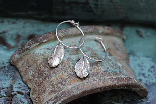 SILVER AGAPANTHUS SEED POD HOOPS