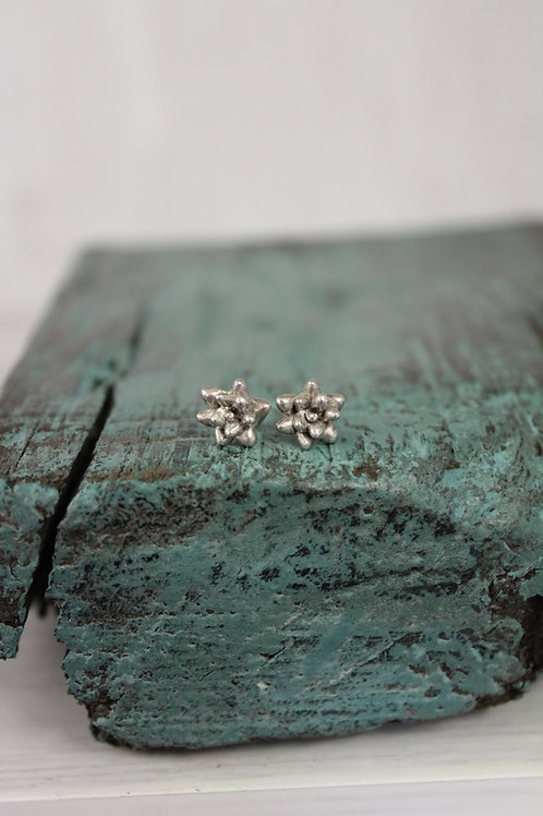 Silver Succulent Stud Earrings
