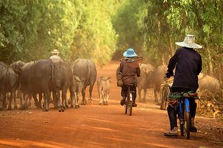 Circuit thailande cambodge by thailande