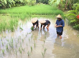 Chiangmai©thailandeevasion